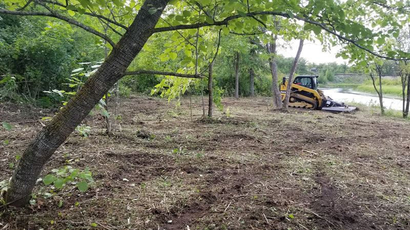 Brush Clearing Services Winnipeg MB